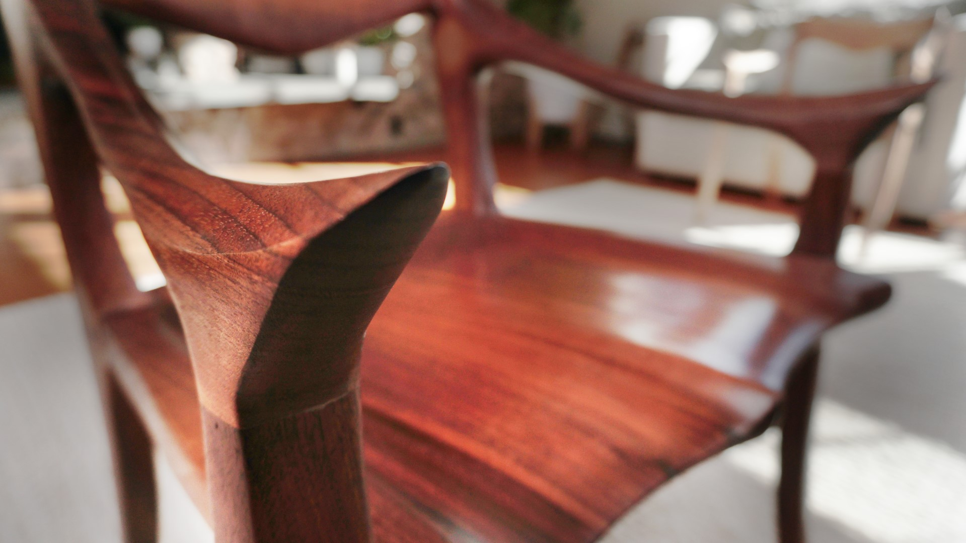 ORGANIC SCULPTED FURNITURE